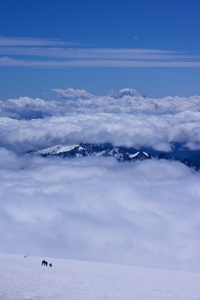 Muir Snowfield and Mount Adams.jpg